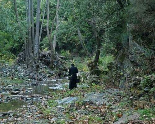 δάσος μοναχός