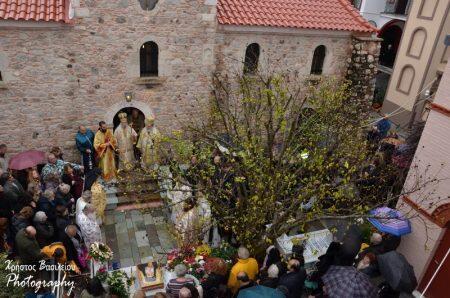 Ι. Μονή Οσίου Δαβίδ: Κοσμοπλημμύρα στο Μνημόσυνο για τον Μακαριστό Γέροντα Ιάκωβο Τσαλίκη