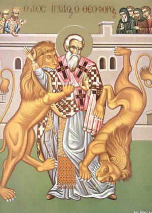 Αποτέλεσμα εικόνας για Ανακομιδή Ιερών Λειψάνων του Αγίου Ιερομάρτυρος Ιγνατίου του Θεοφόρου