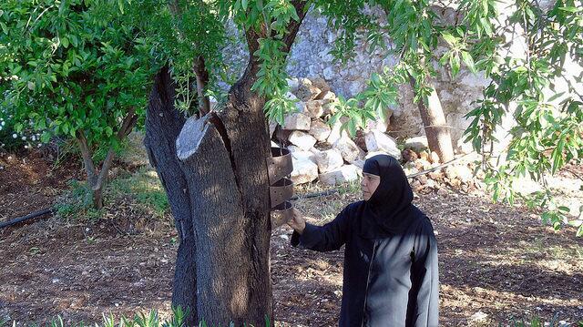 λατρευτικές εκδηλώσεις ανάμνησης της παρόδου του ιερού λειψάνου του Αγίου Νικολάου στην ομώνυμη Γυναικεία Κοινοβιακή Μονή Ιρά Αθανίου