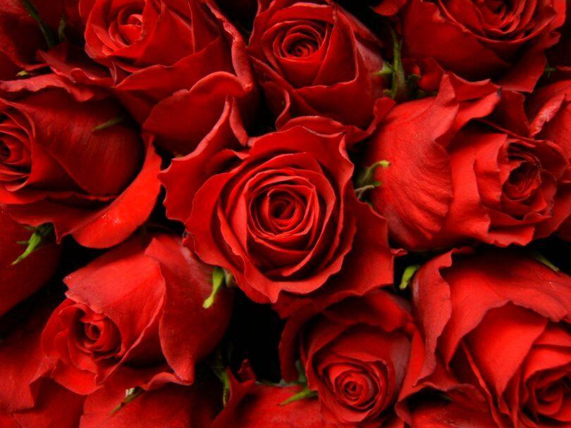 Κωνσταντίνου και Ελένης - γιορτή: Χρόνια πολλά σε όλους! Ευχές στον Κωνσταντίνο και την Ελένη