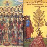 Κυριακή Γ' Ματθαίου – Η πρόνοια του Θεού