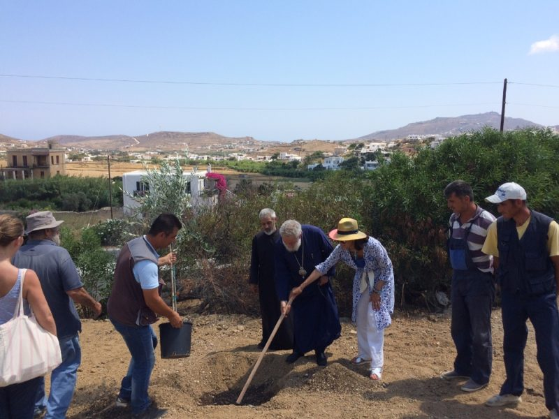 Μύκονος: Δενδροφύτευση στην Ιερά Μονή Παναγίας Τουρλιανής
