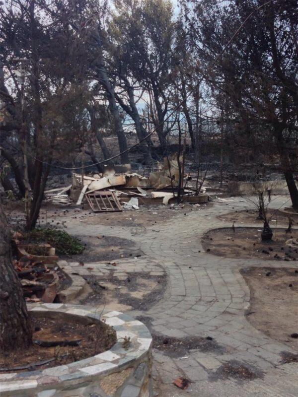ΕΙΔΗΣΕΙΣ - Φωτιά: Σοκάρουν οι εικόνες από το Λύρειο Ίδρυμα