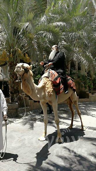 Ο Μετεώρων Θεόκλητος πάνω σε καμήλα
