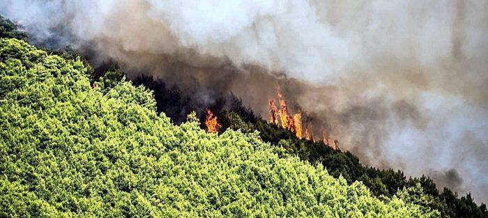 Φωτιά Ζάκυνθος Τώρα: Σε ύφεση η πυρκαγιά