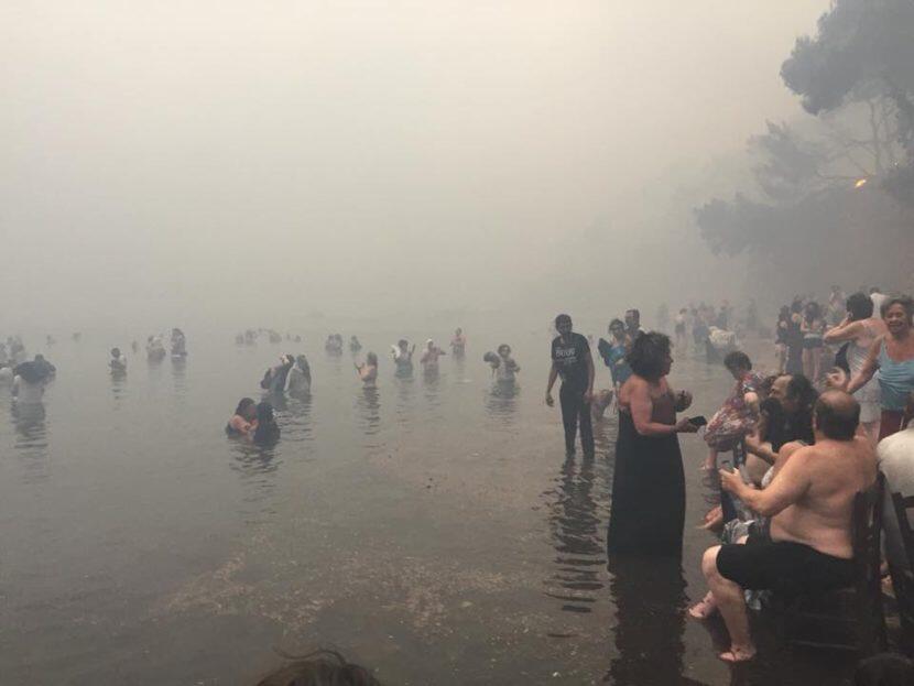 Φωτιά Ειδήσεις: 4.090 οι αιτήσεις των πυρόπληκτων για επίδομα