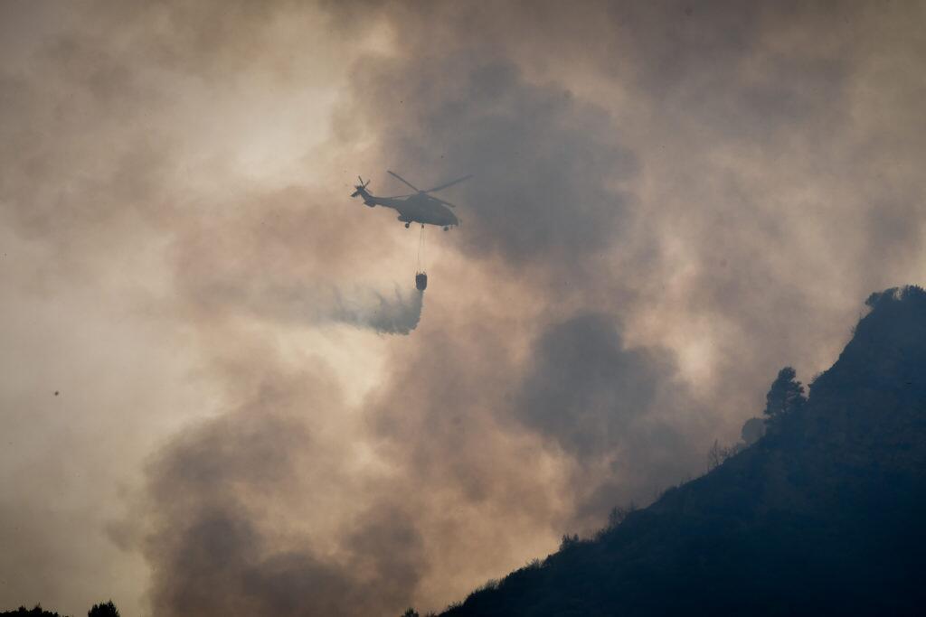 Φωτιά ΤΩΡΑ Ηλεία - Συγκλονιστικές εικόνες