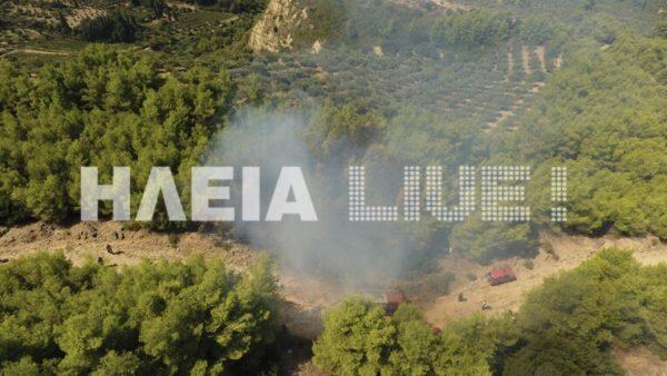 Φωτιά ΤΩΡΑ Ηλεία: Ήρωες οι πυροσβέστες