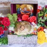 Η Τιμία Κάρα του Οσίου Δαβίδ του εν Ευβοία στα Πιέρια Όρη