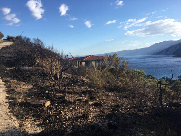 Φωτιά ΤΩΡΑ: Εκκενώνονται σχολεία στην Κεφαλονιά