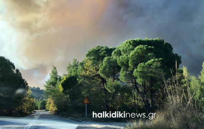 Φωτιά ΤΩΡΑ: Συγκλονιστικές εικόνες από τη Σιθωνία Χαλκιδικής