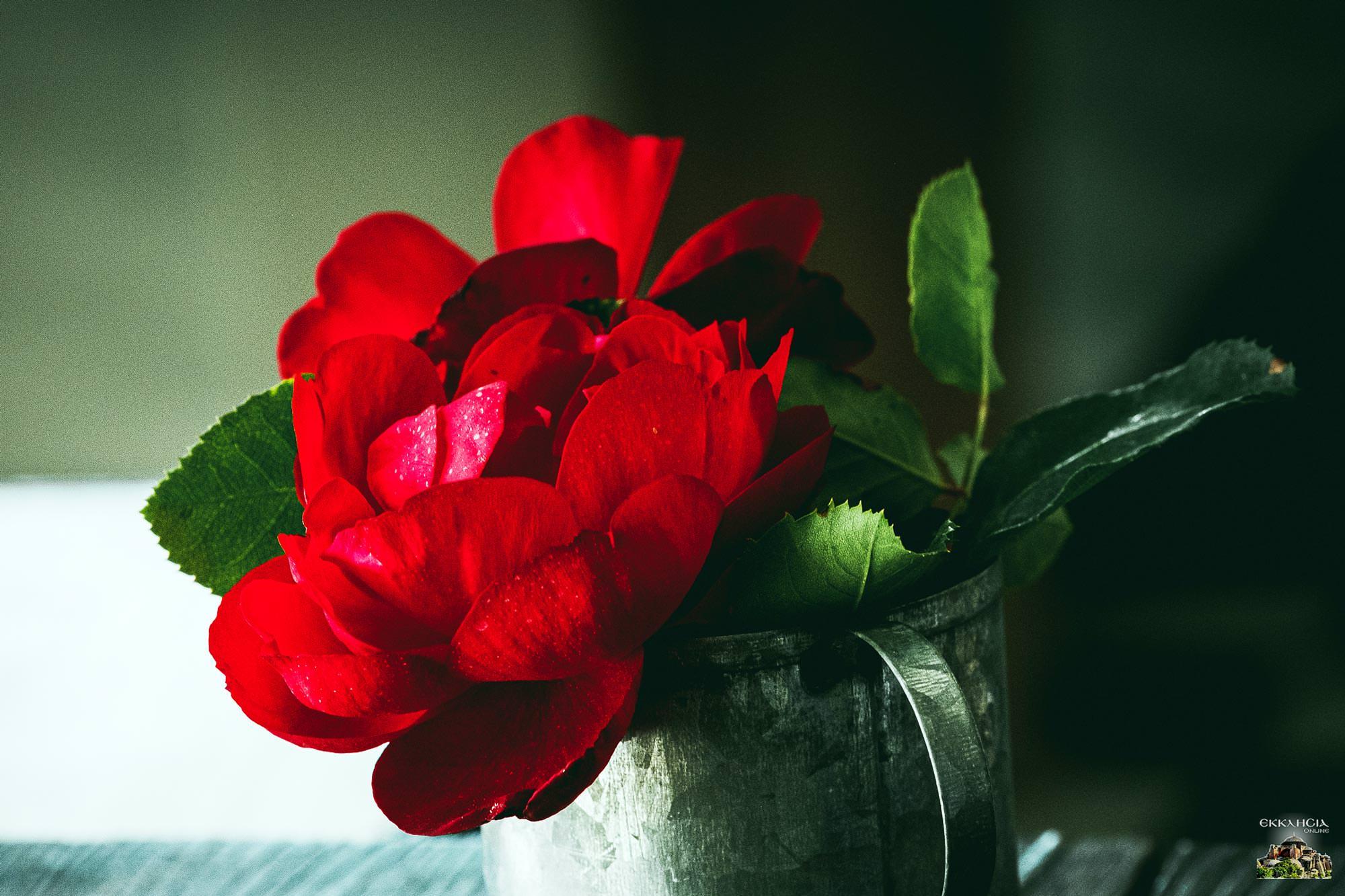 εορτολόγιο λουλουδια