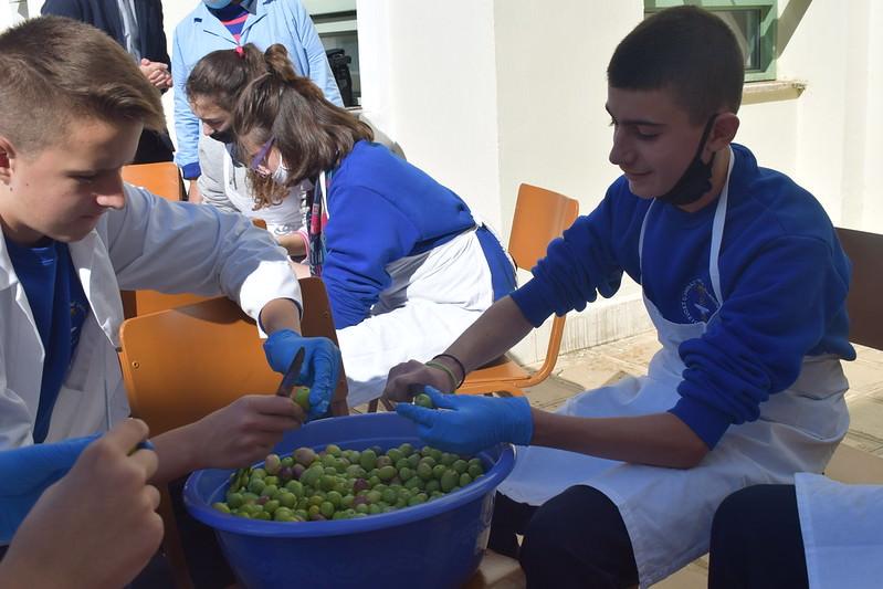 Μαθητές μάζεψαν και ετοίμασαν ελιές της Μητρόπολης Αργυροκάστρου
