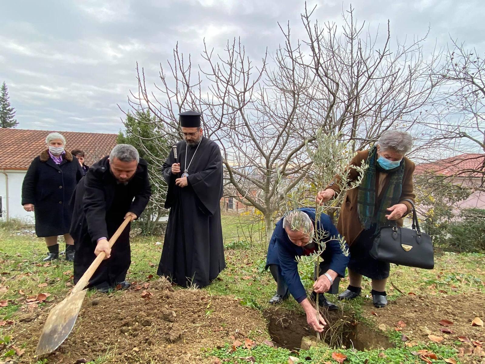 Μητροπολίτης Ελμπασάν Αντώνιος Δενδροφύτευση Αλβανία 2020