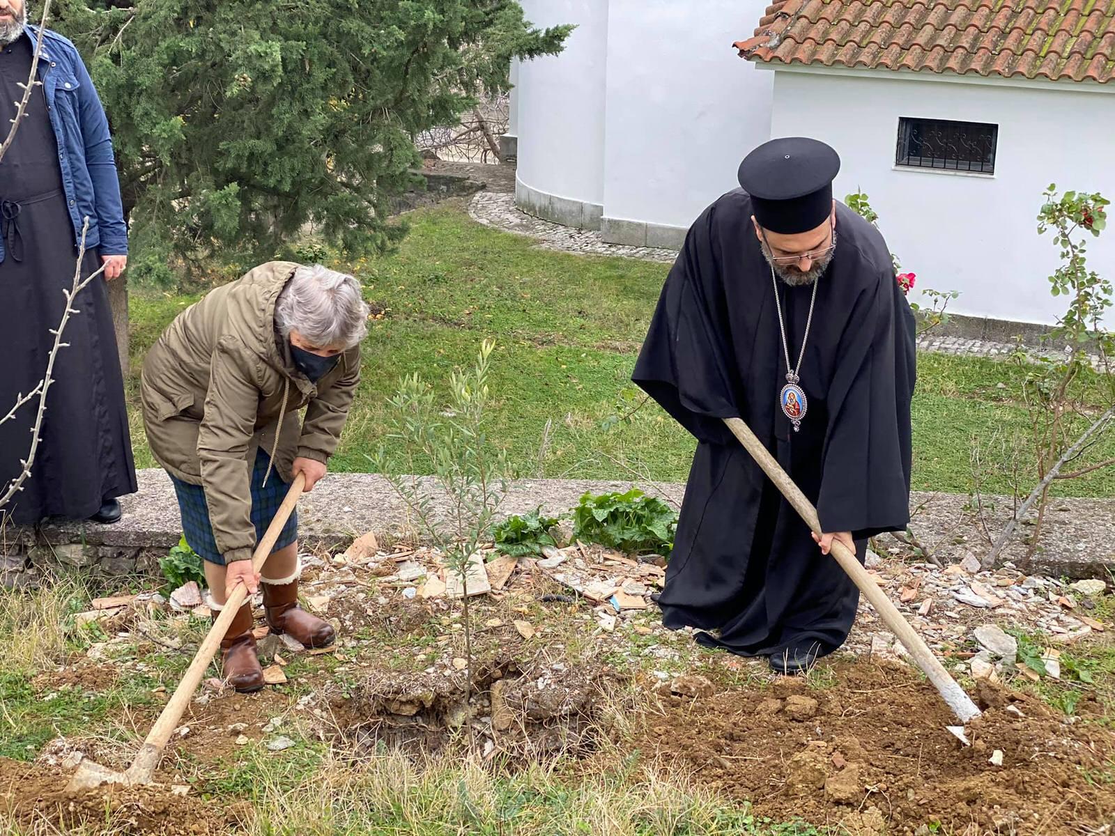 Μητροπολίτης Ελμπασάν Αντώνιος Δενδροφύτευση Αλβανία Χριστούγεννα