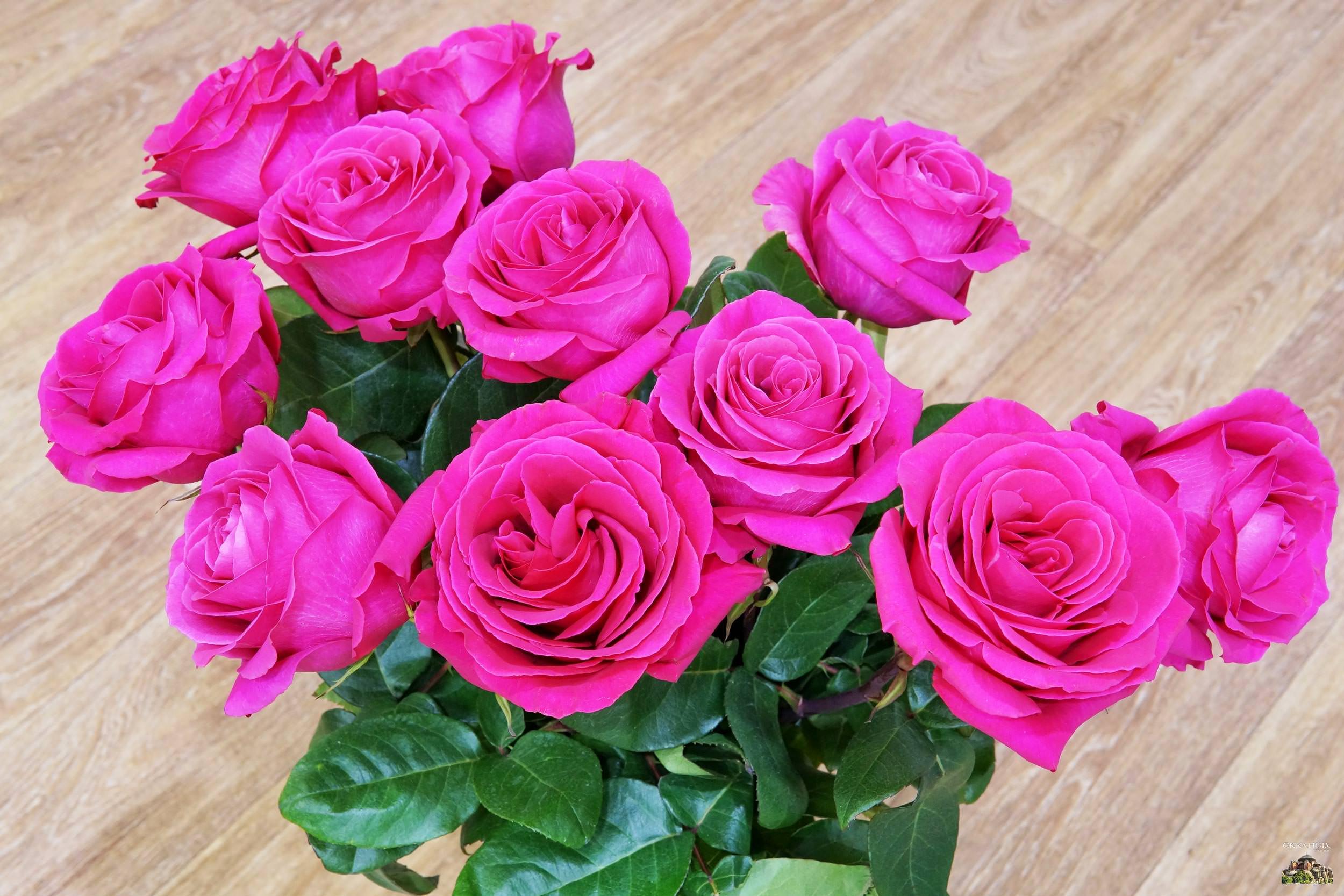 Γιορτή λουλούδια