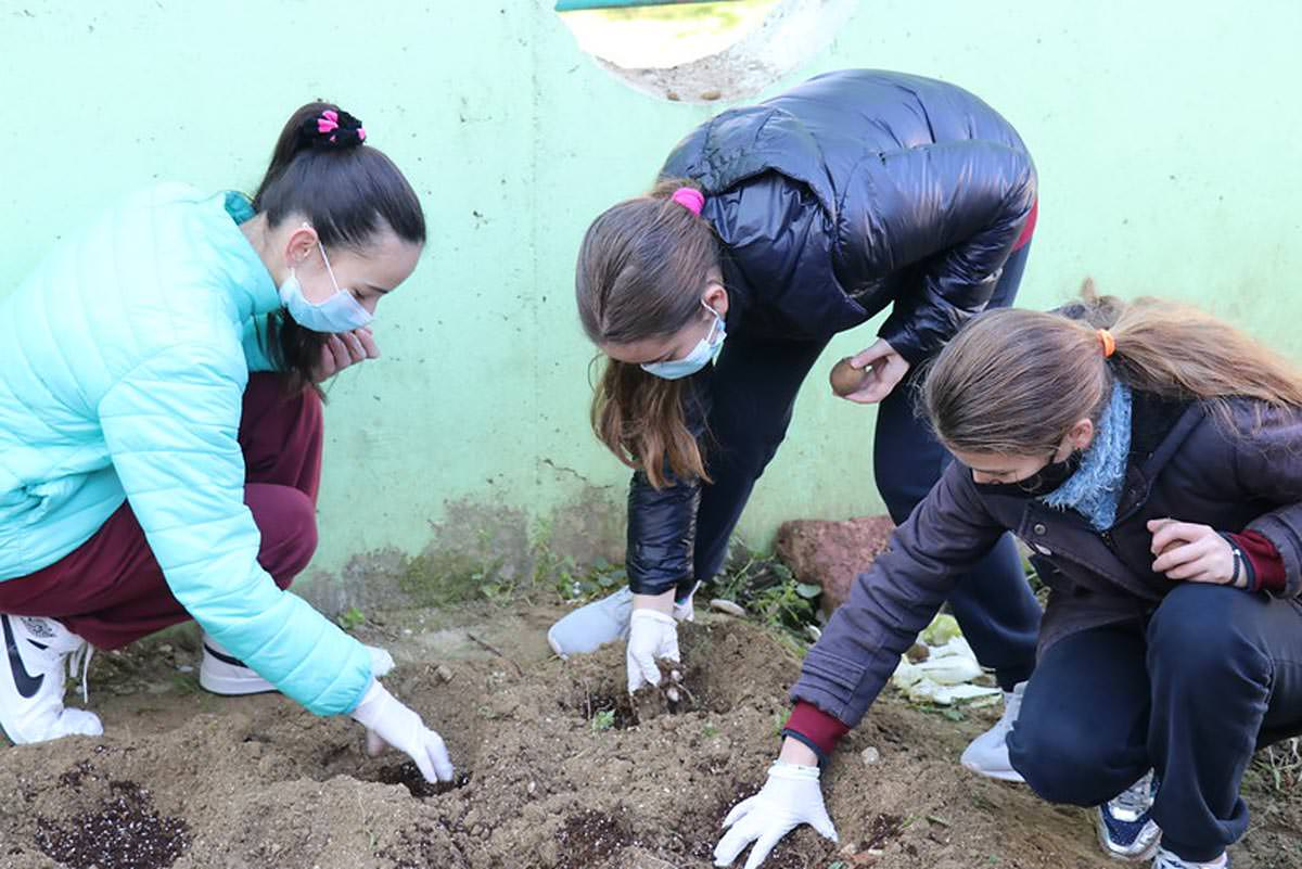 Μαθητές Αργυροκάστρου φύτεψαν λαχανικά