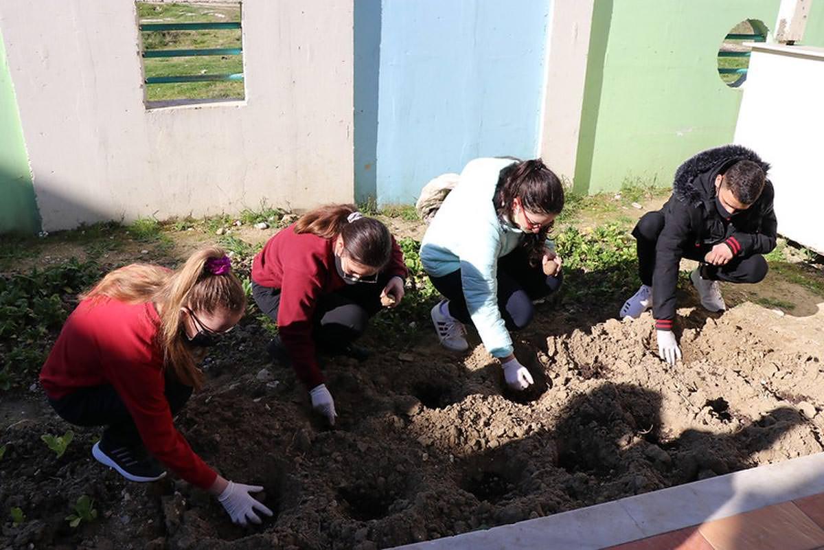 Μαθητές φύτεψαν λαχανικά