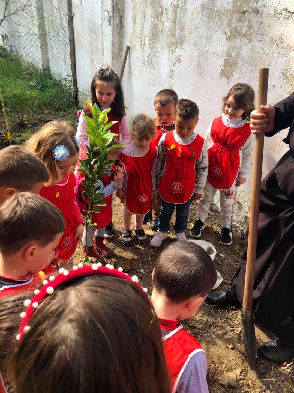 Παιδάκια φύτεψαν δένδρα σε εκκλησία Αλβανίας