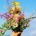 εορτολόγιο λουλούδια ουρανός