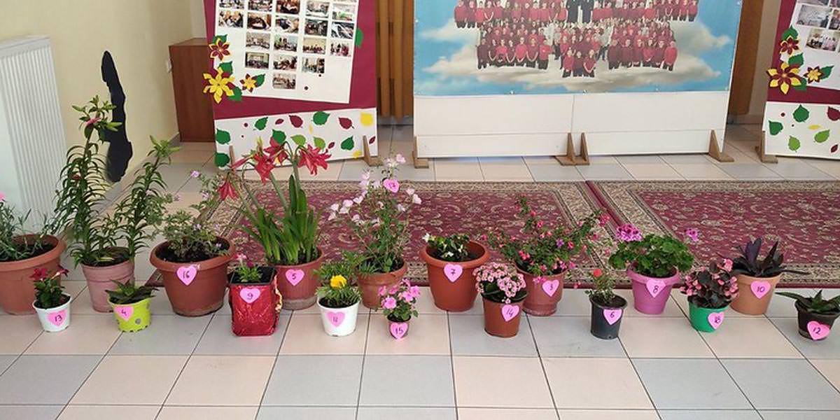 Διαγωνισμός λουλουδιών για παιδιά