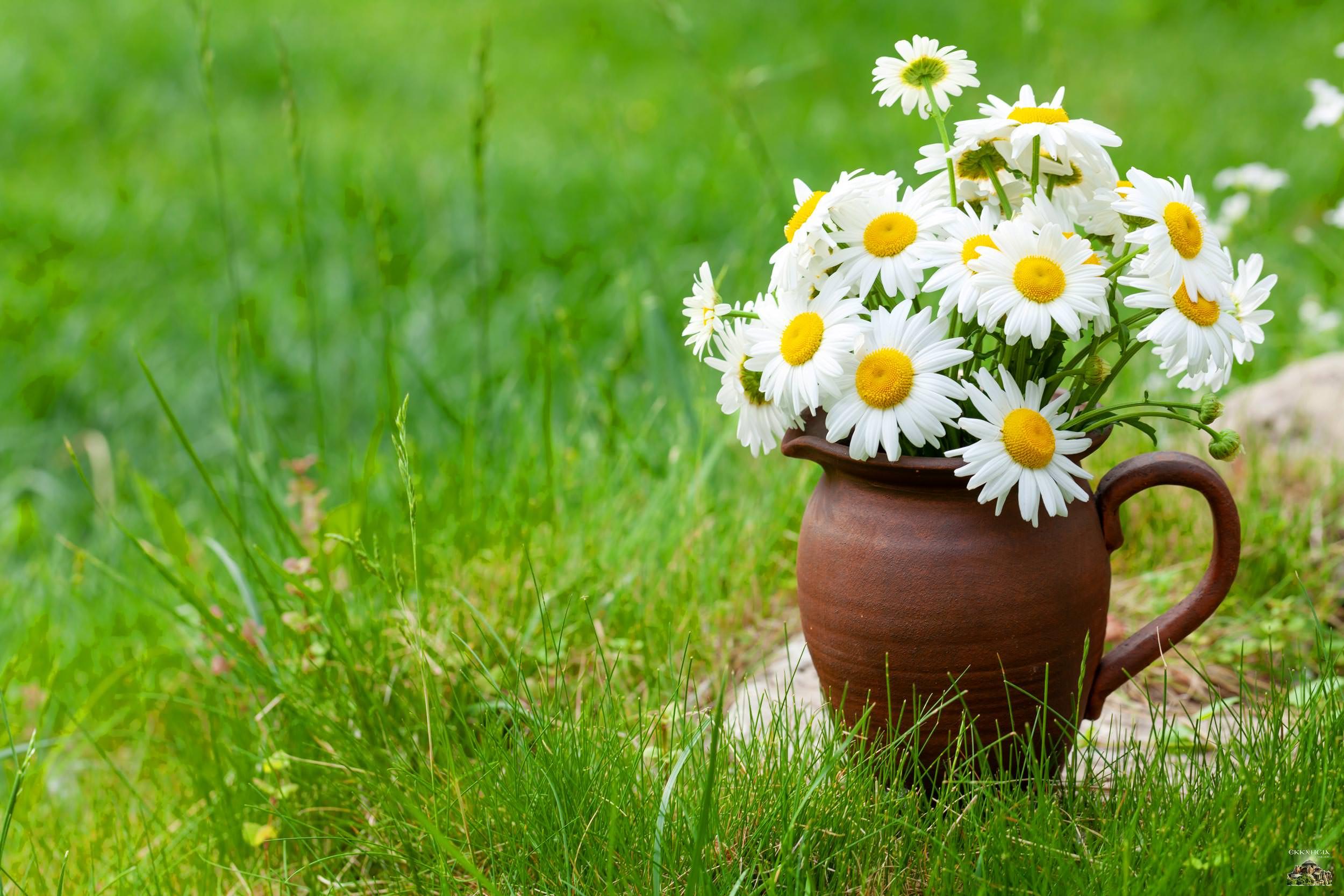 Εορτολόγιο Γιορτή σήμερα λουλούδια