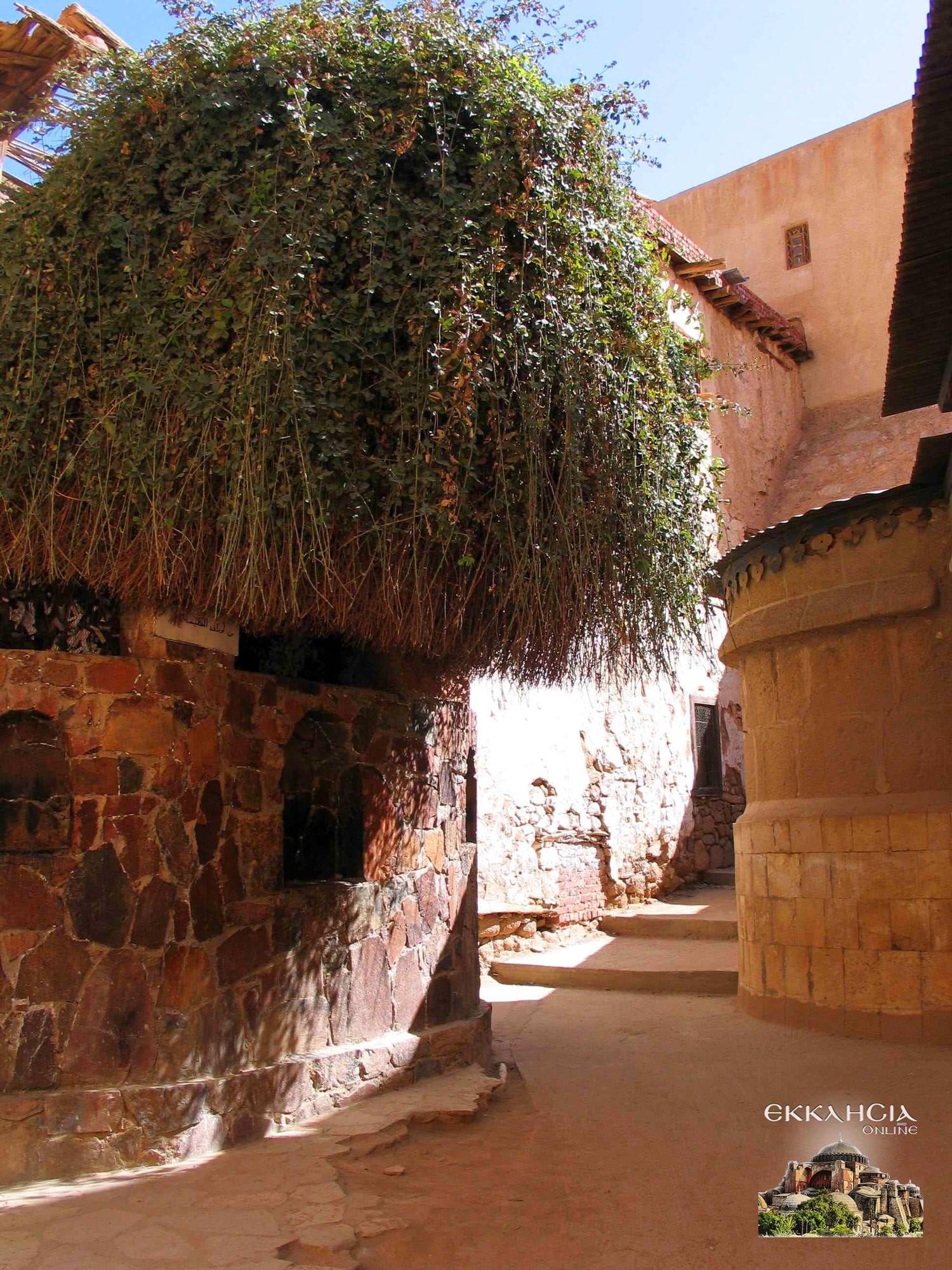 Προσκύνημα στο μοναστήρι της Αγίας Αικατερίνης Σινά